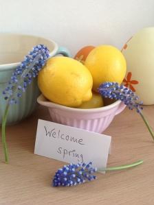 Food – Zitronenblechkuchen (Kinder lieben ihn), auch vegan möglich